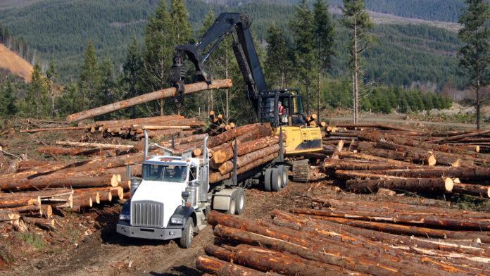 Softwood Lumber Board USDA partnership